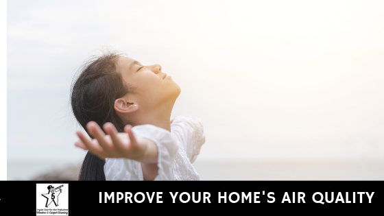 Improve Your Home's Air Quality
